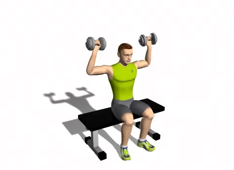 Seated_pronated_dumbbell_press